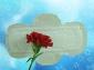 卫生巾OEM贴牌生产加工